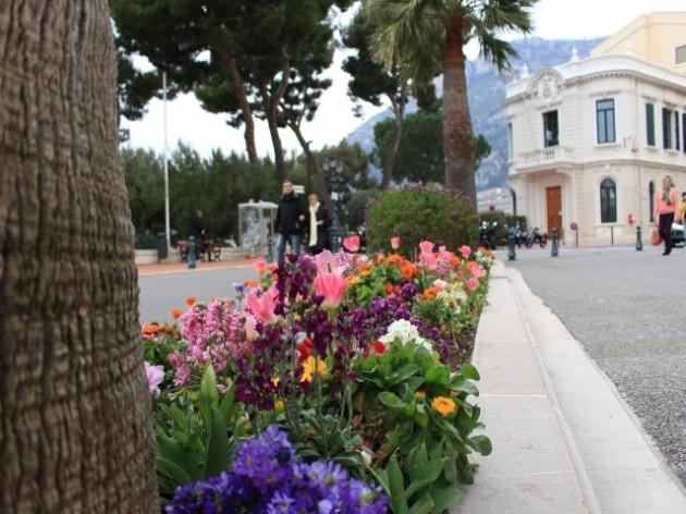 モナコの街並み2